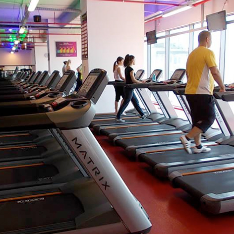 tomis-fitness