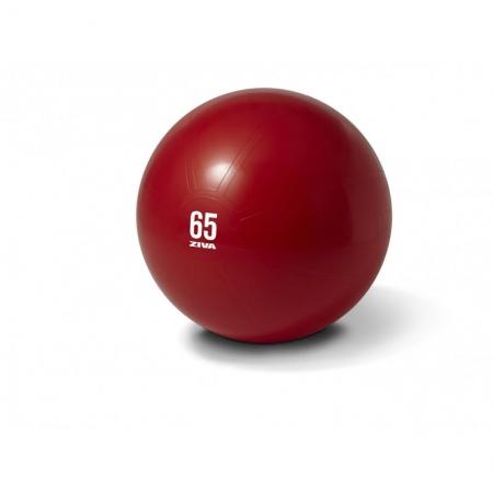 Minge fitness aerobic rosie 65cm